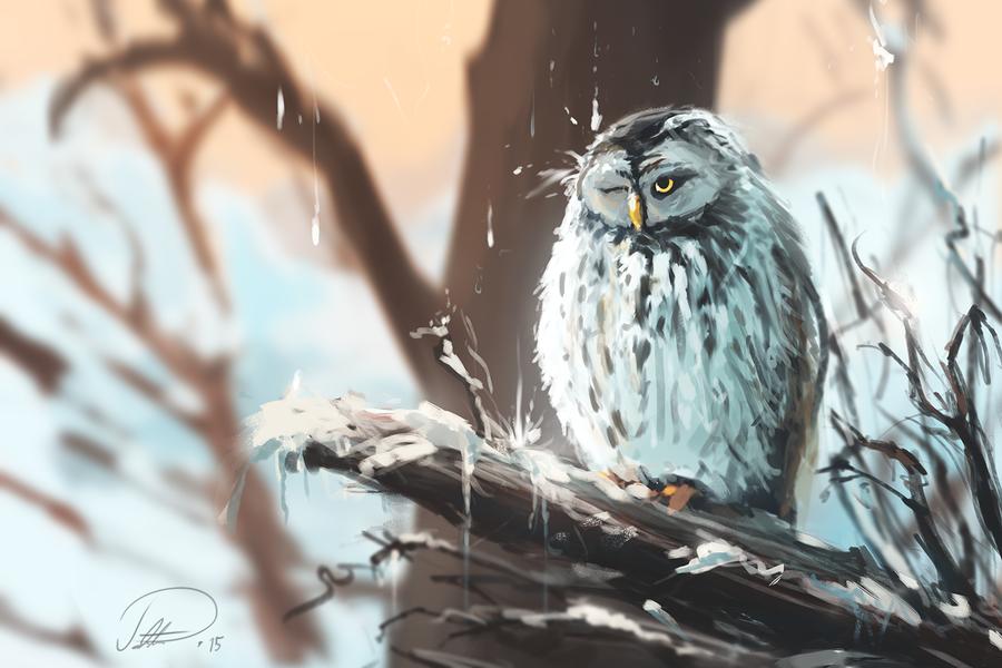 Owl by Patriartis