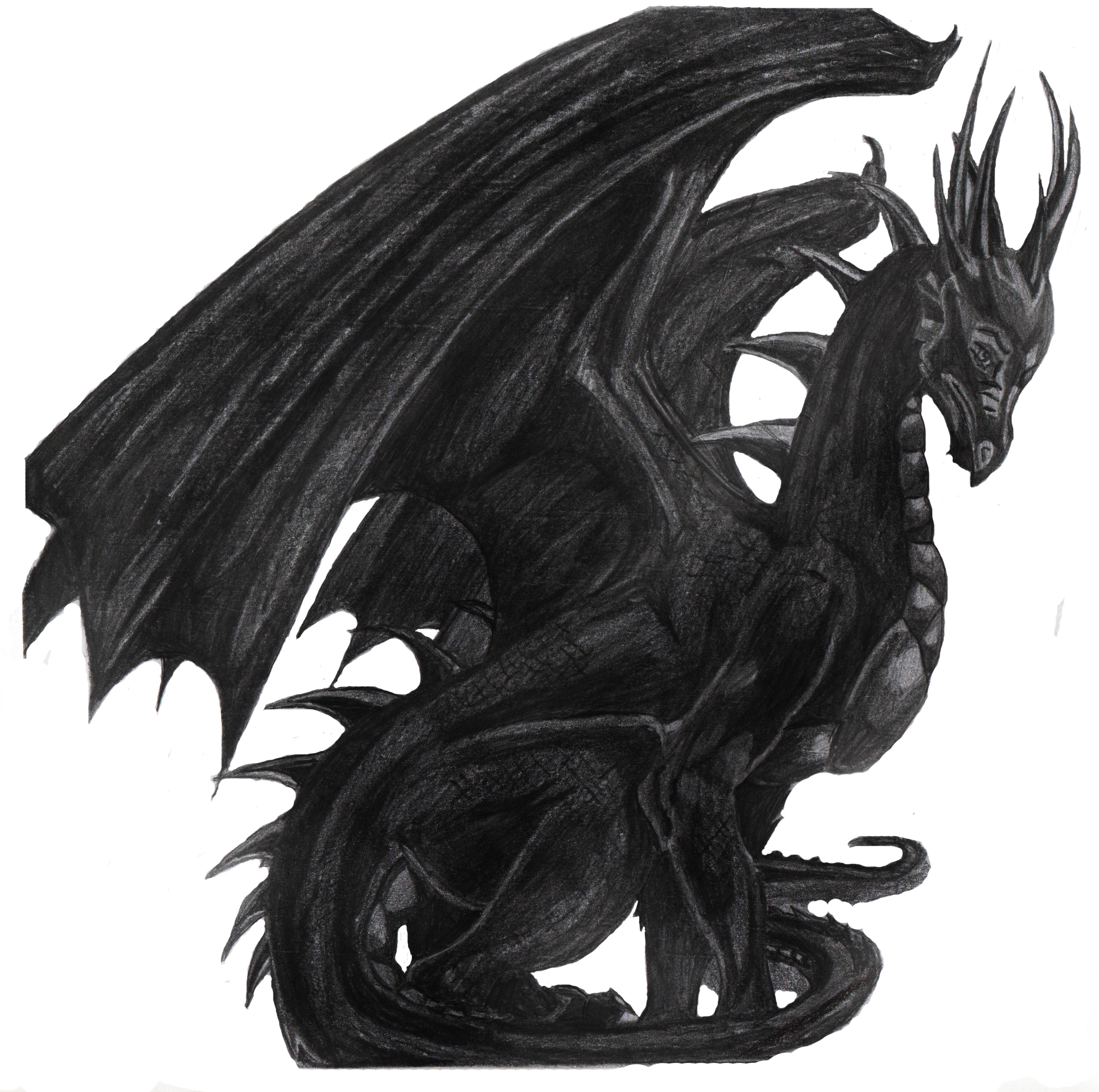 Personajele mele  Dragon_black_by_eraliz-d4igsje