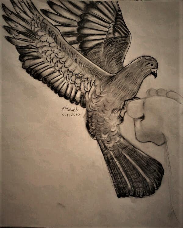 Bird by EimanSeleem