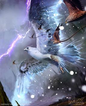 HEX: Hail Hawk