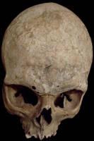Skull5 by ChristasVengel-stock