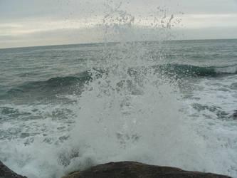 The sea 14