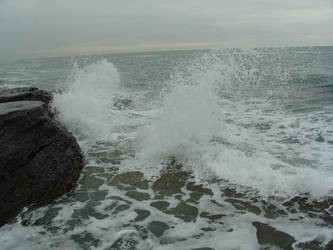 The sea15