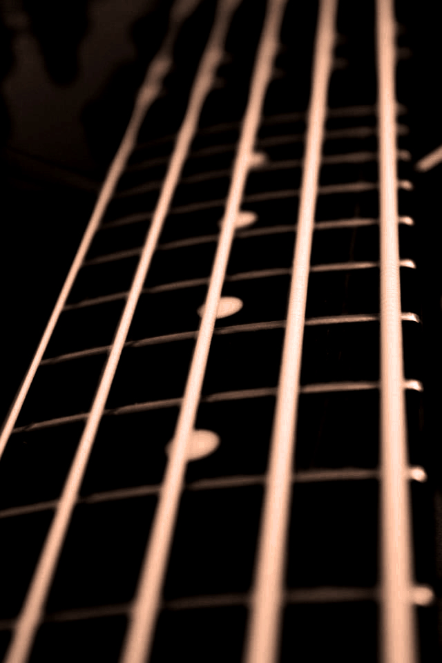 Colorless 5 String Bass By Akuki