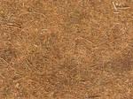 Seamless texture - Ground vegetation #1