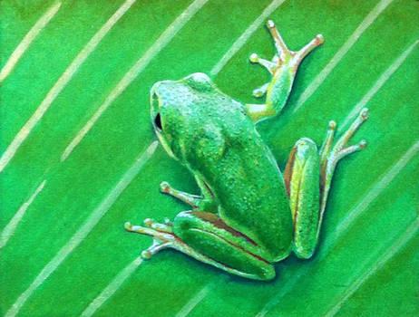 Frog03