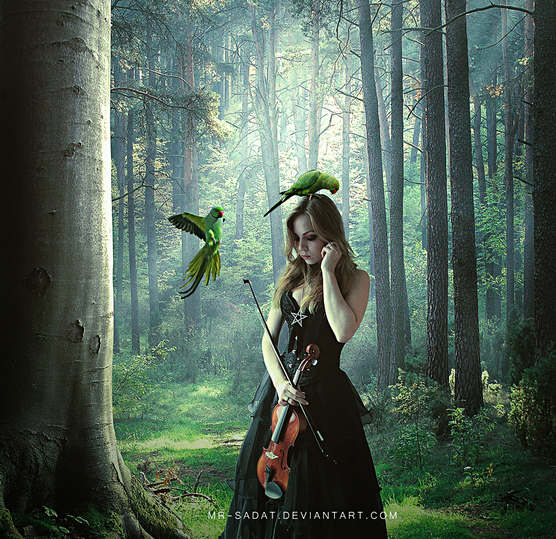 Jungle Melody by Mr-Sadat