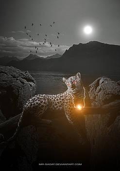 Tiger of Light