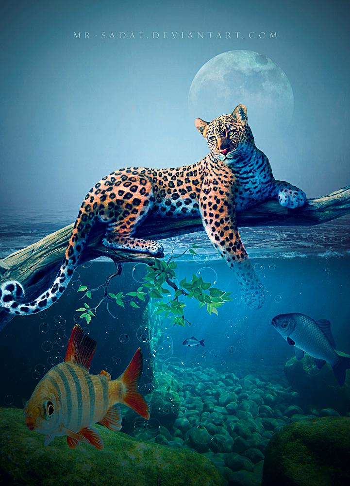 The Leopard by Mr-Sadat