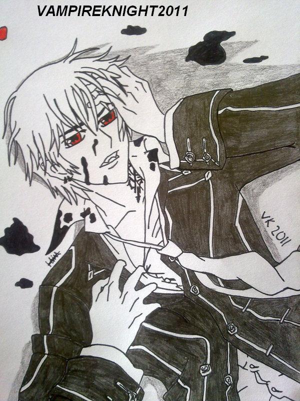 vampireknight2011's Profile Picture