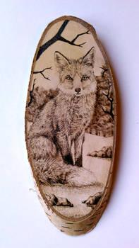 Fox (Vulpes vulpes) pyrography