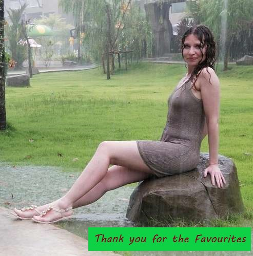 Thank you for the Favourites-06