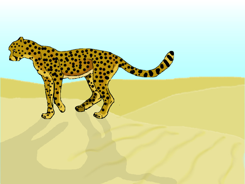 last persian cheetah by king-ocelot-claws