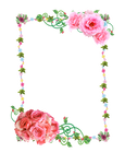 Frame PNG with roses