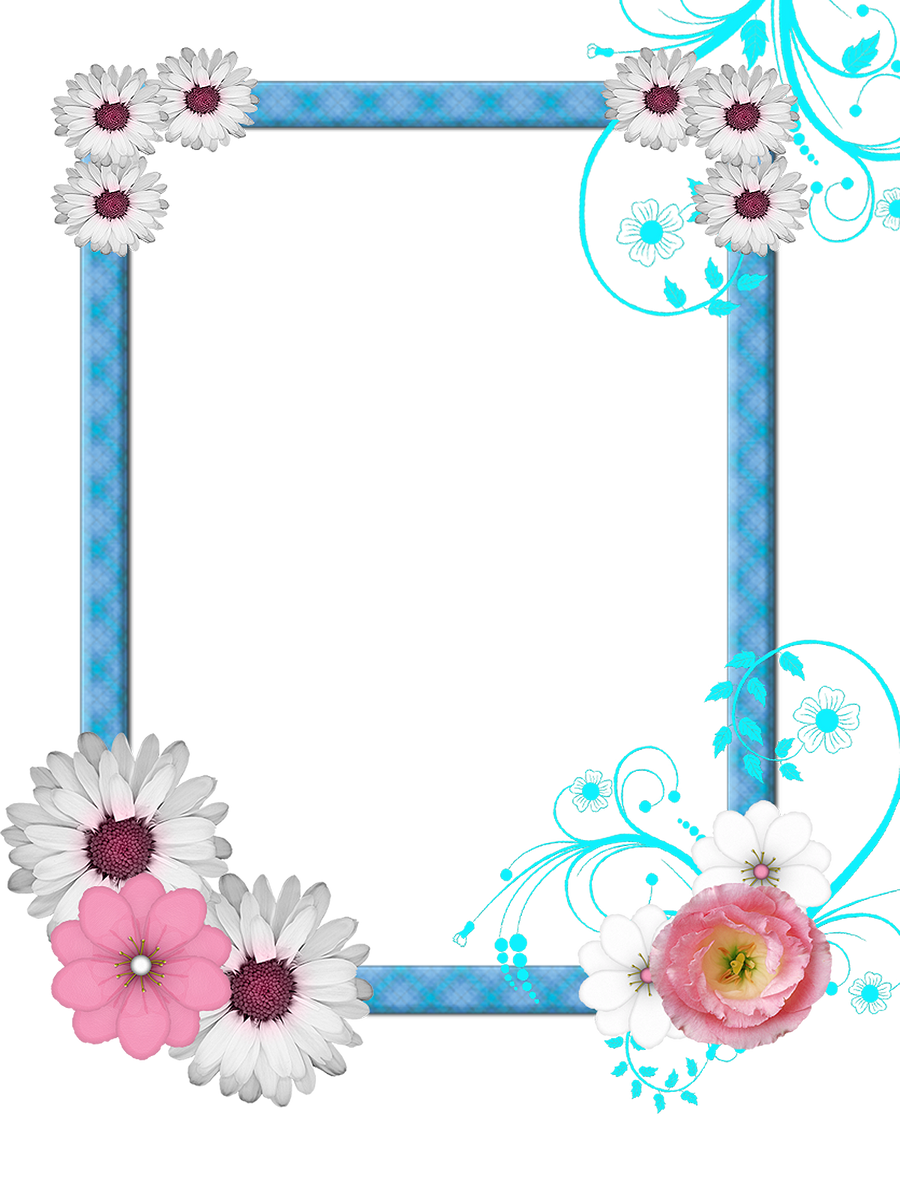 frame PNG by Melissa-tm on DeviantArt