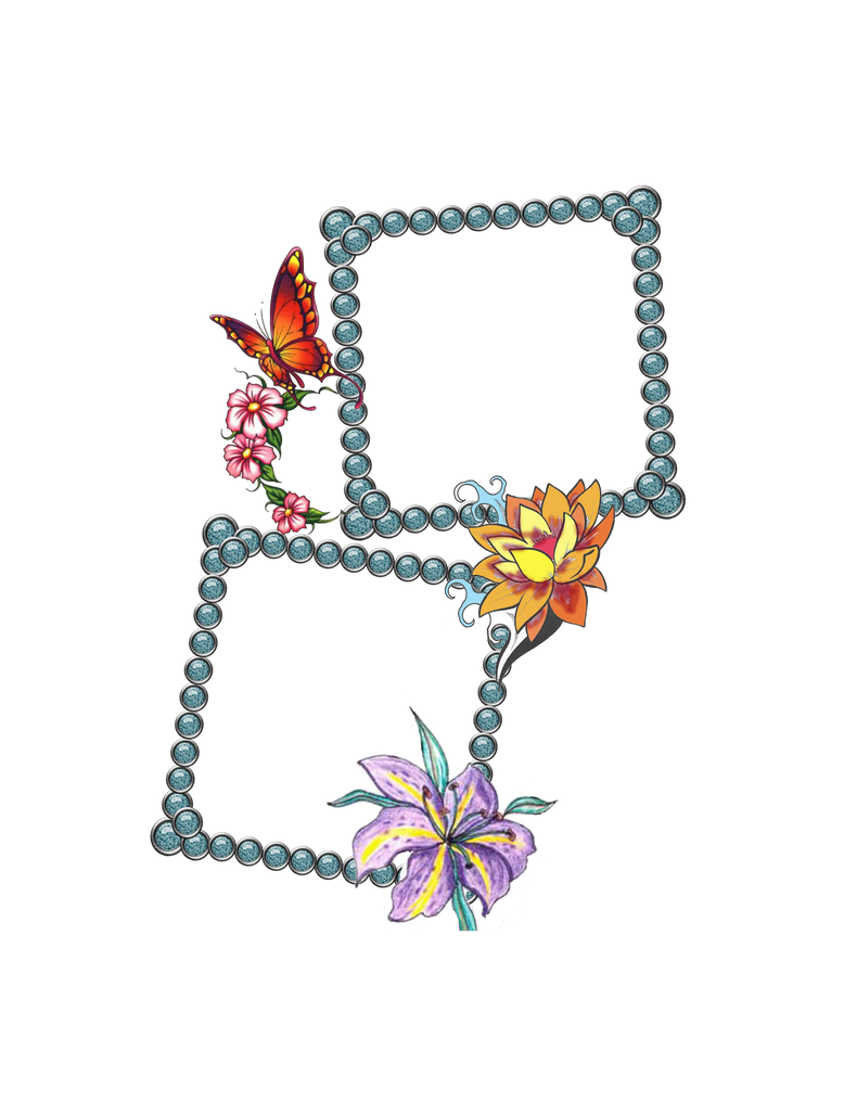 Swirl Frame Png Frame Png With Butterflies by