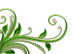 leaves and pearls png