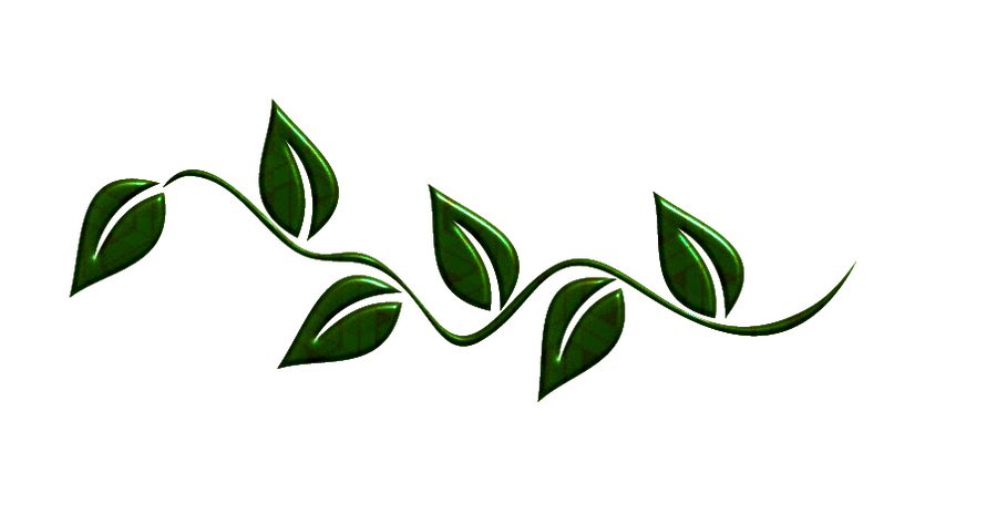 Green Leaves Png By Melissa Tm On Deviantart