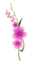 sweet pink flowers png