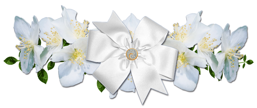 White Rose Png White Roses And Bow Png by