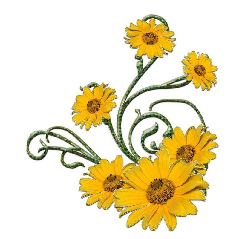 yellow flower vector png - photo #40