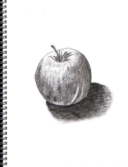 Apple Sketch By Chongyx On Deviantart