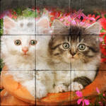 Two Kittens in a Pot