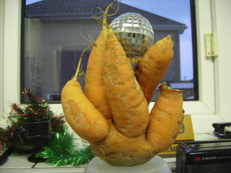Fist of carrot