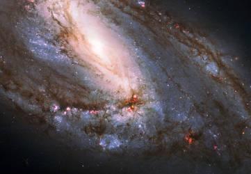 Leo Triplet [Messier 66]