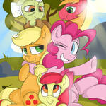 Apple Pie Family
