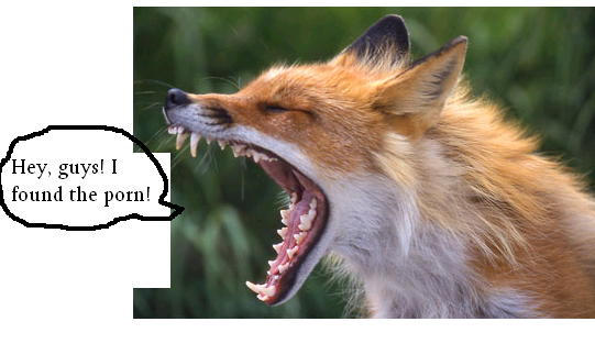 What foxes do unwatched by Midnight-Raccoon