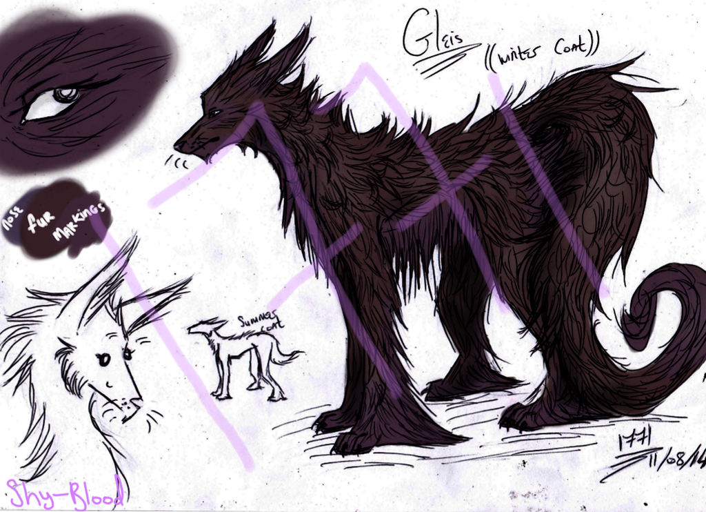 Gleis reference by Shy-Blood