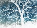 Inverted Tree by ThunderFreak