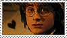 I Support Harry Potter: I by truckstops
