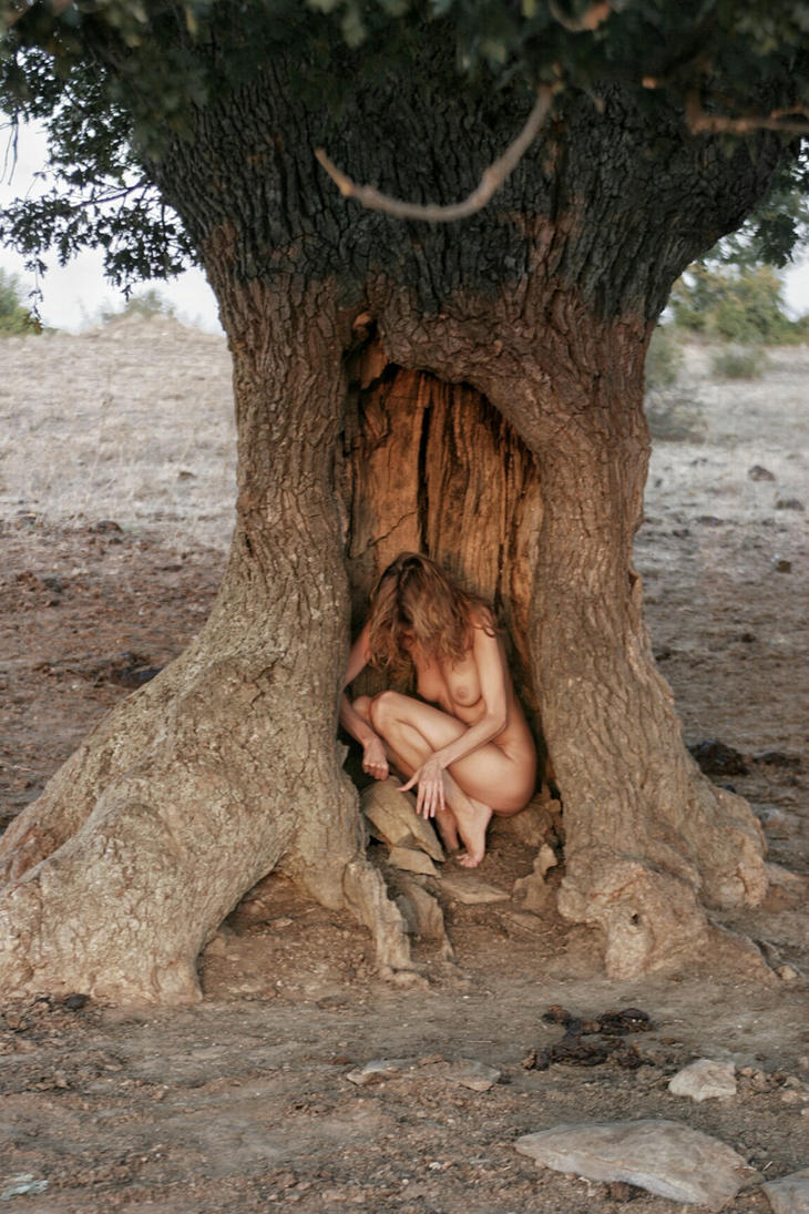 Old Oak tree by VladIYIKrum