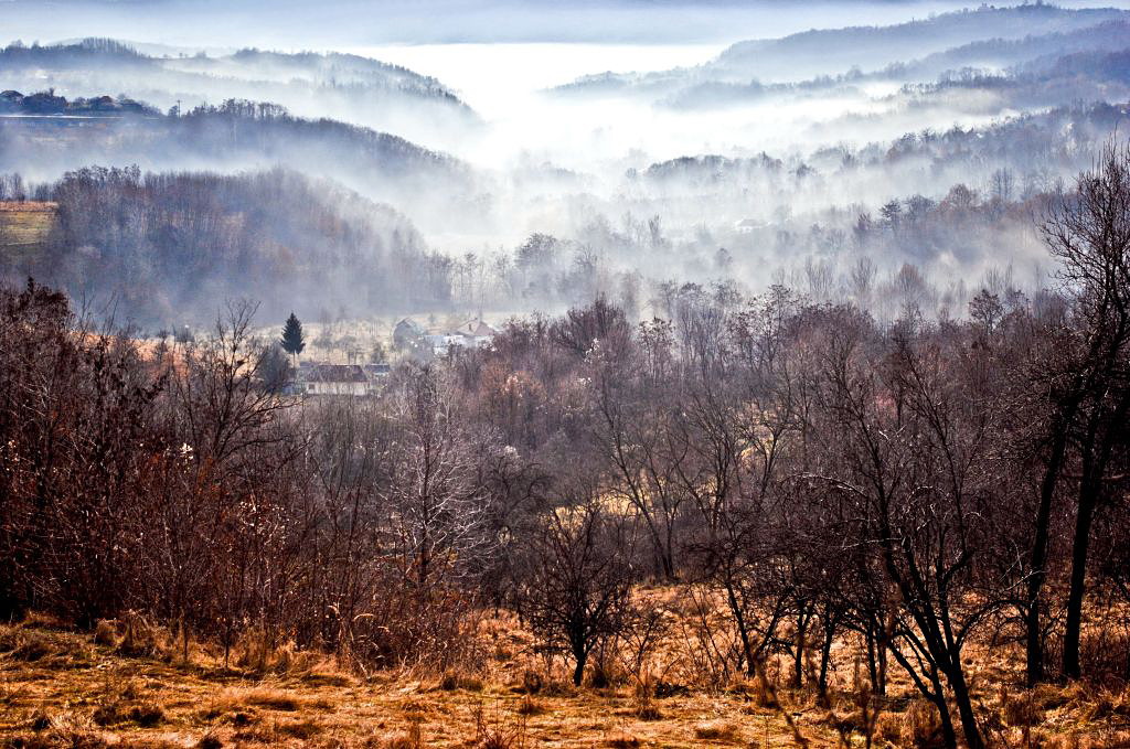 Foggy autumn III by schwarzeKatze18