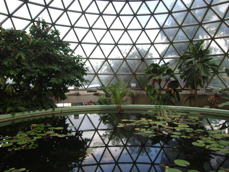 MtCootha botanical garden dome by Wolfie 83 on DeviantArt
