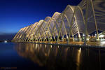 Athens Olympic Complex 2