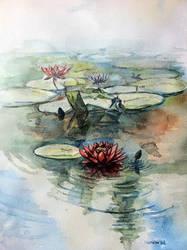 lotus lake by sumanprajapati
