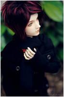 Autumn taste by Misrav