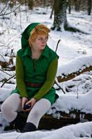 LoZ: Winter in Hyrule by Mondlied