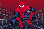 Spider's Web (Colored)