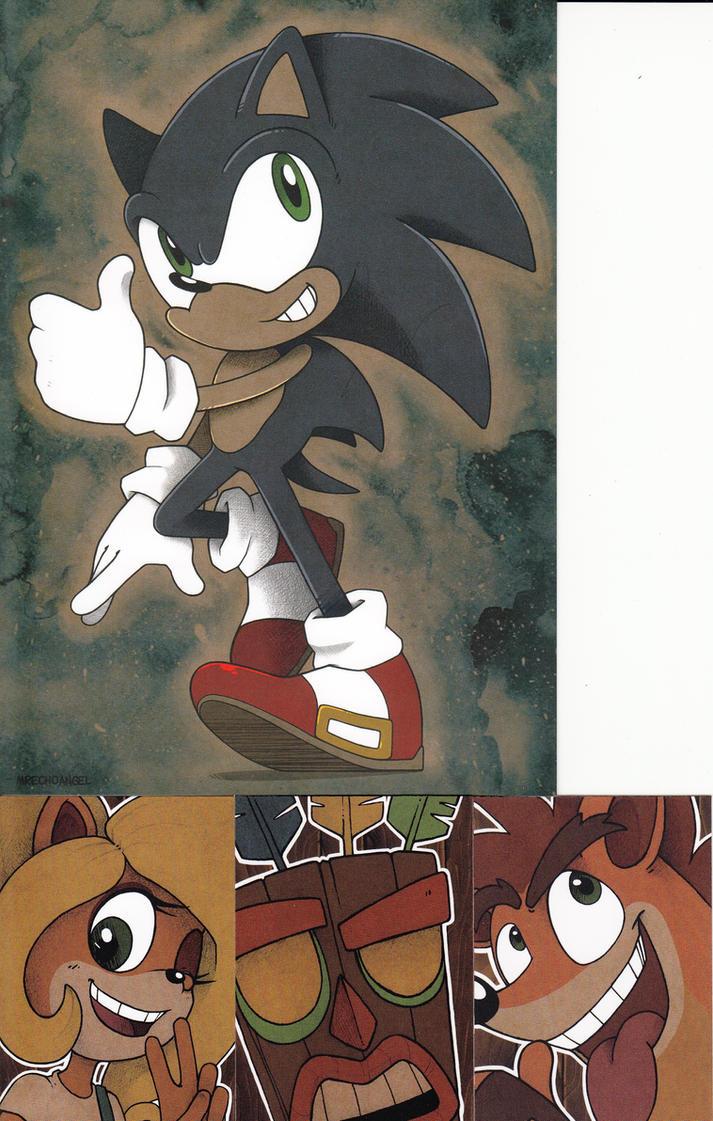 Sonic and Crash Bandicoot Prints by MrEchoAngel by edCOM02