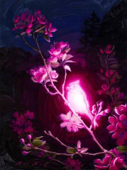Bioluminescence : Altruism