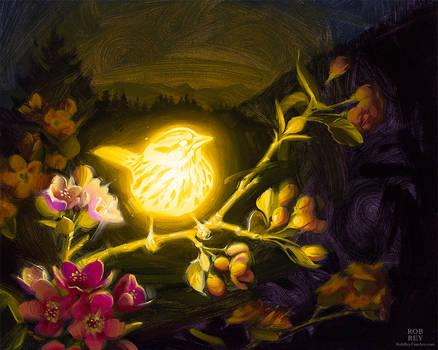 Bioluminescence : Tenacity