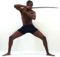 Gratuitous Swording 8 by Ahrum-Stock