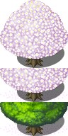 Cherry Blossom [RPG-Maker-MV] by petschko