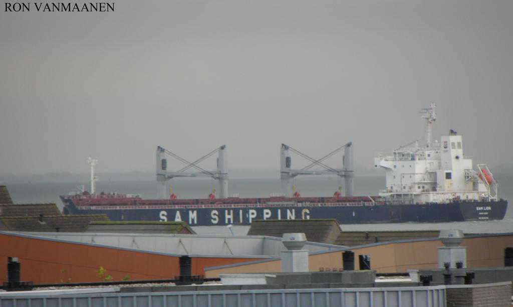 Chinese bulk carrier Sam Lion 2012- by roodbaard1958