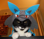 Lucario Is Displeased