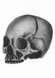 'Skull' Airbrush